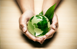 Educação Ambiental e as Perspectivas de Atuação do Assistente Social