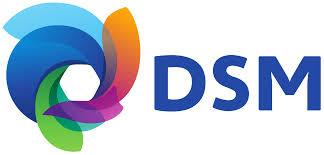 Novo DSM 5 Classificação Americana para os Transtornos Mentais